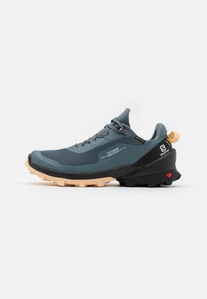 CROSS OVER GTX  - Fjellsko - stormy weather/black/almond cream
