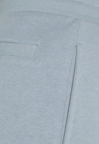 Redefined Rebel - PRAS UNISEX - Short - dusty blue - 6