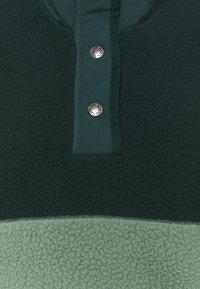The North Face - CRAGMONT SNAP SCARABGR - Fleece jumper - scarab green/laurel wreath green - 2