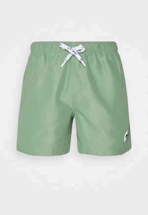 SOUTH BEACH - Swimming shorts - bright green