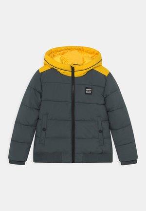 TASH - Winter jacket - proud army