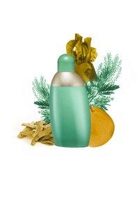Cacharel Fragrance - EDEN EAU DE PARFUM VAPO - Eau de Parfum - - - 2
