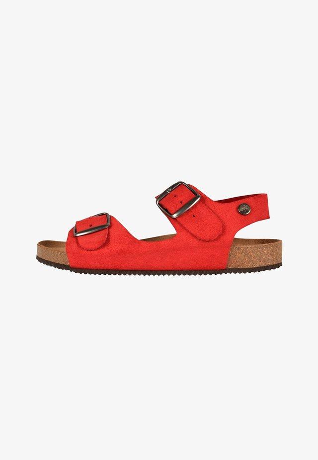CAJOU - Walking sandals - red
