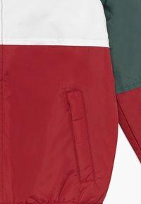 Pepe Jeans - FERN - Winter jacket - myrtle green - 3