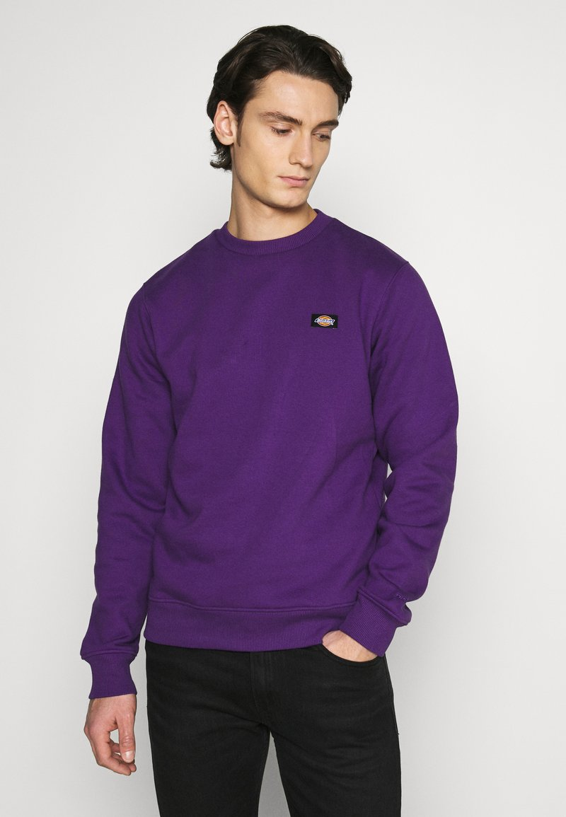 Dickies - NEW JERSEY - Felpa - deep purple
