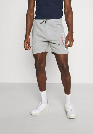 MICKAEL - Tracksuit bottoms - gris chine