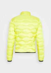 Blauer - Down jacket - yellow - 8