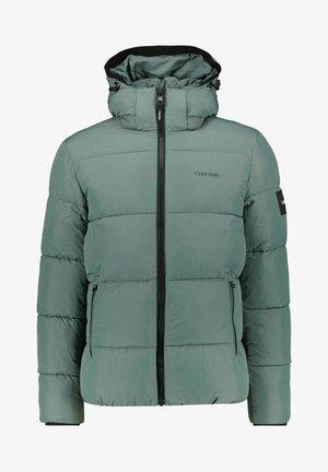 CRINKLE - Veste d'hiver - mint