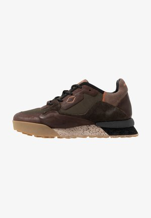 SANDOVAL - Sneakers laag - green/dark brown