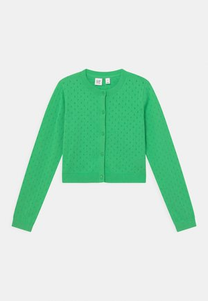 GIRL EASTER  - Cardigan - parrotfish green