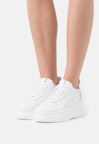 Zign - Sneakersy niskie - white - 0