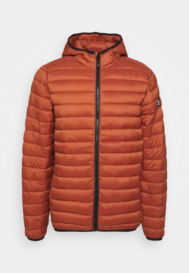 TALAN - Winter jacket - pecan orange