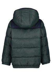 Noppies - Winter jacket - silver pine - 1