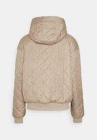 Hollister Co. - REVERSIBLE - Winter jacket - grey - 1