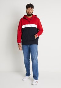 Tommy Hilfiger - COLORBLOCKD HOODED ZIP - Sudadera con cremallera - red - 1