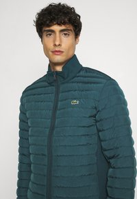 Lacoste - Light jacket - wheelwright/enzian - 3