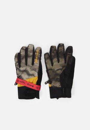 IMPREZA GORE-TEX GLOVE UNISEX - Gloves - ashcroft