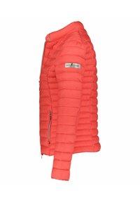 Frieda & Freddies - Winter jacket - original - 1