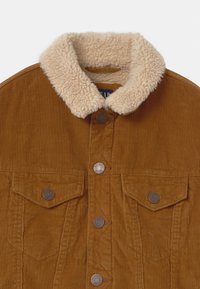 GAP - BOYS - Light jacket - deep camel - 2