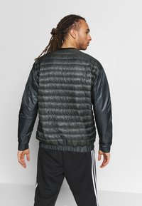 adidas Performance - TERREX HIKE BOMBER JACKET - Untuvatakki - grey six - 2