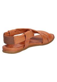 ILC - Sandales - brown - 8