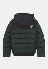 Cars Jeans - FRAME  - Winter jacket - bottle - 1