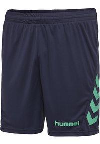 Hummel - DUO SET - Sports shorts - atlantis/marine - 7