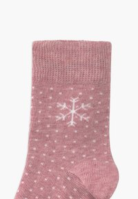 camano - 4 PACK - Socks - winter berry - 2