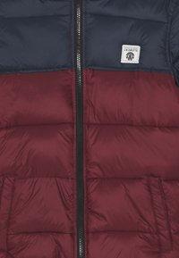Element - ALDER AVALANCHE BOY - Zimní bunda - vintage red - 2