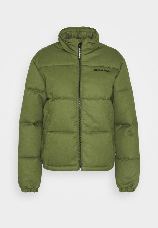 RODESSA - Winterjacke - army green