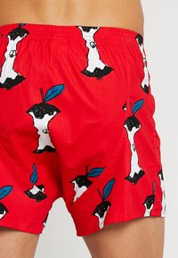 Lousy Livin Underwear - APPLE - Trenýrky - red - 2
