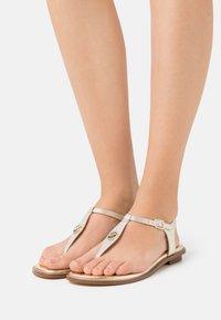 MICHAEL Michael Kors - MALLORY THONG - T-bar sandals - pale gold - 0