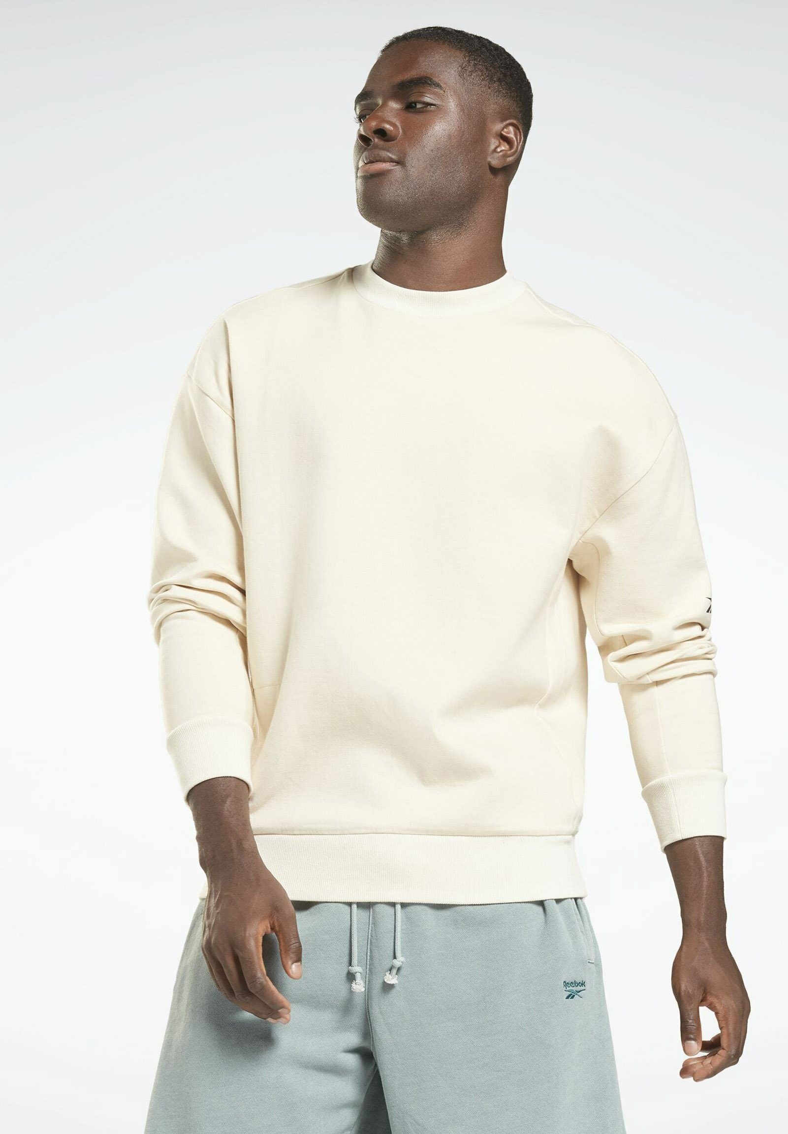 Herren DREAMBLEND  CREWNECK - Sweatshirt