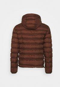 Peuterey - Down jacket - bordeaux - 1