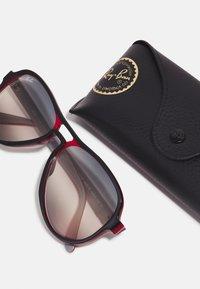 Ray-Ban - Sunglasses - black/red/light grey - 3
