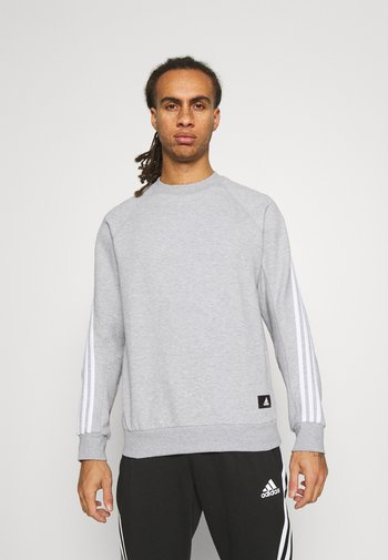 CREW MUST HAVES SPORTS PULLOVER - Sweatshirts - grey