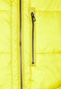 camel active - Zimní bunda - yellow - 2