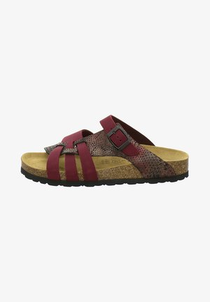 Slippers - beery