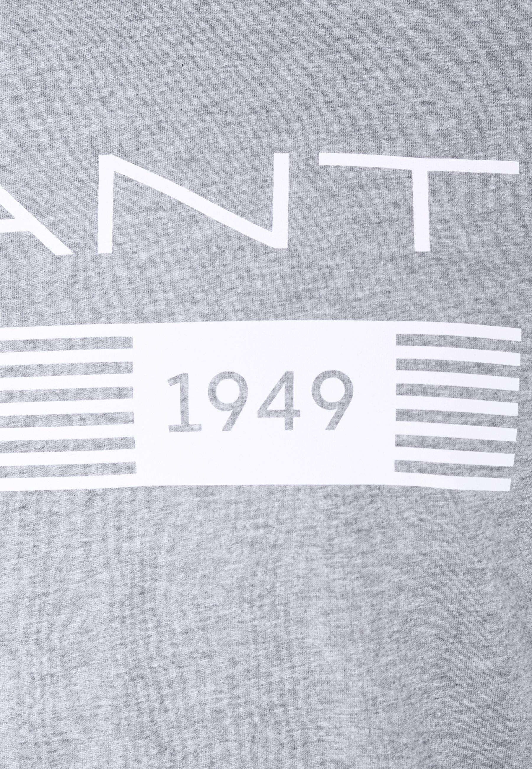 Gant Stripes - T-shirt Print Grey Melange