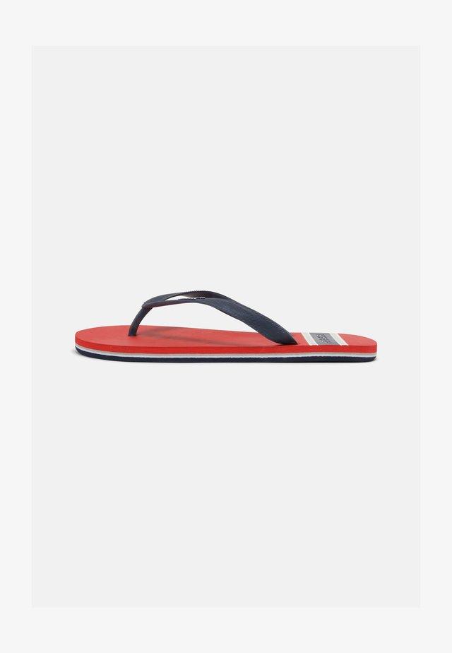 BAY BEACH MAN - Sandalias de dedo - red