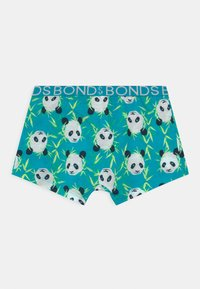 Bonds - 3 PACK - Panty - multi-coloured/grey - 1