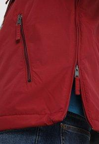 Napapijri - RAINFOREST POCKET  - Veste d'hiver - red bourgogne - 5