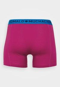 MUCHACHOMALO - VARI 3 PACK - Boxerky - dark blue/royal blue/purple - 1