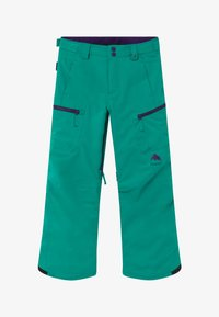 Burton - ELITE CARGO - Snow pants - dynasty green - 2