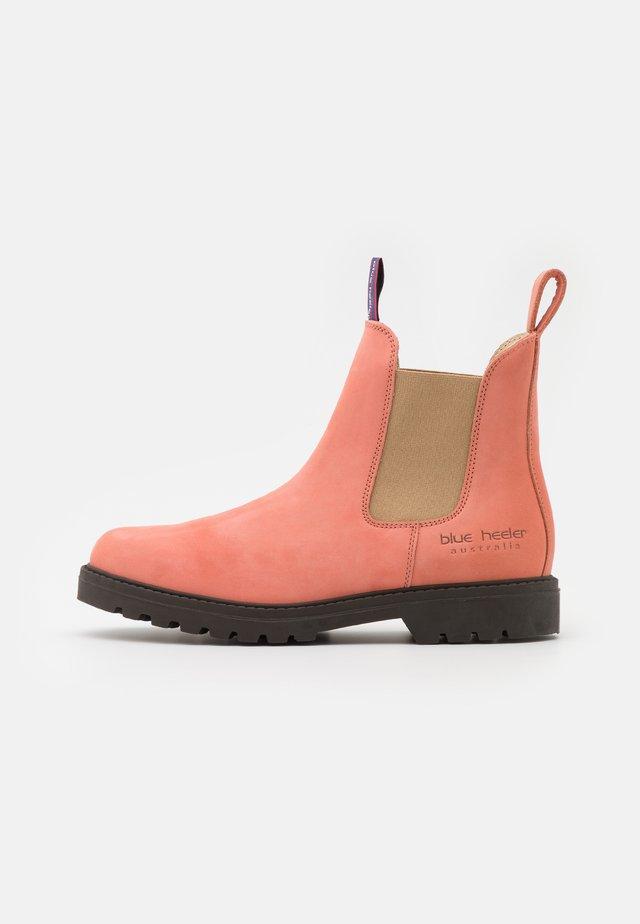 HAMILTON UNISEX - Classic ankle boots - watermelon/sahara