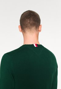 Tommy Hilfiger - TONAL AUTOGRAPH - Pullover - green - 3