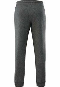 Schneider Sportswear - CHESTERM - Tracksuit bottoms - grau meliert - 1