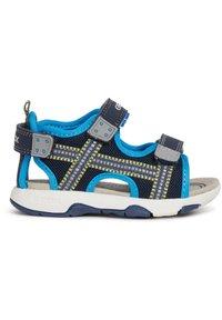 Geox - S. MULTY - Walking sandals - navy - 7