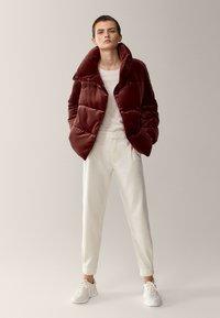 Massimo Dutti - Winter jacket - bordeaux - 0