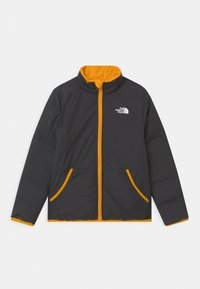 The North Face - REVERSIBLE ANDES UNISEX - Chaqueta de plumas - summit gold - 2